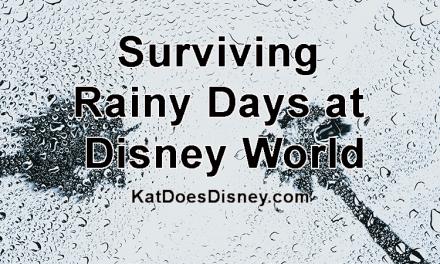 Surviving Rainy Days at Disney World