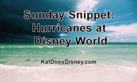 Sunday Snippet: Hurricanes at Disney World