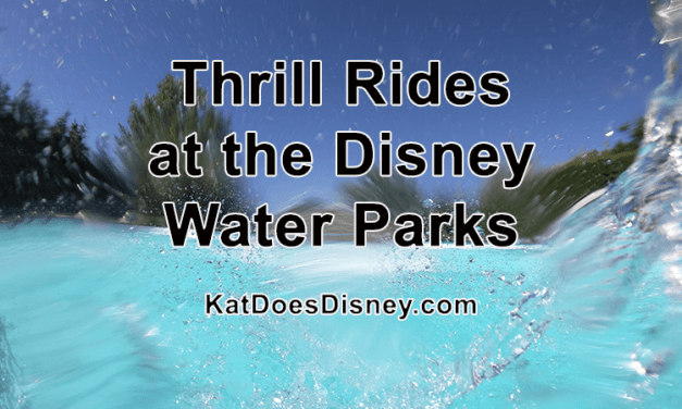 Thrill Rides at the Disney Water Parks